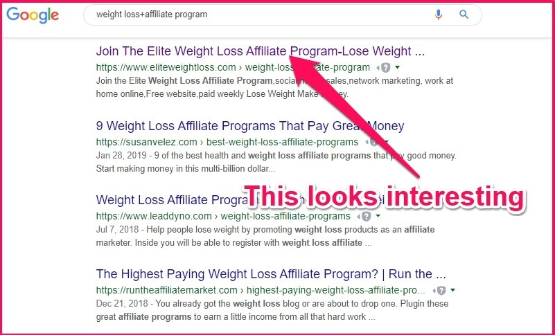 affiliate marketing weight loss niche